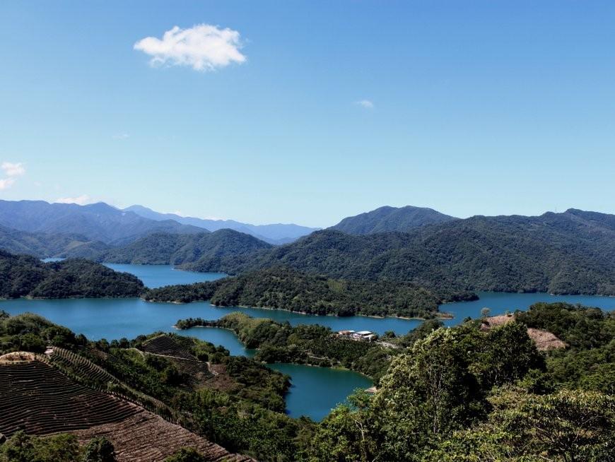 Visit the Bagua Tea Plantation at Thousand Island Lake